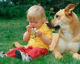 Ребенок и собака: двойная ответственность для родителей